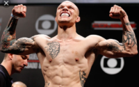 Anthony Smith Lion Heart UFC MMA Fighter